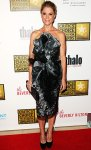 Julie Bowen in a metallic gunmetal Marchesa dress