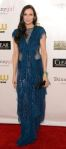 Famke Janssen in a navy blue shimmer sheer paneled short-sleeved gown.