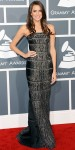 Allison Williams in a gunmetal beaded KaufmanFranco column gown