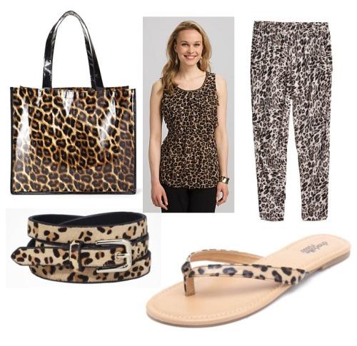 leopard images